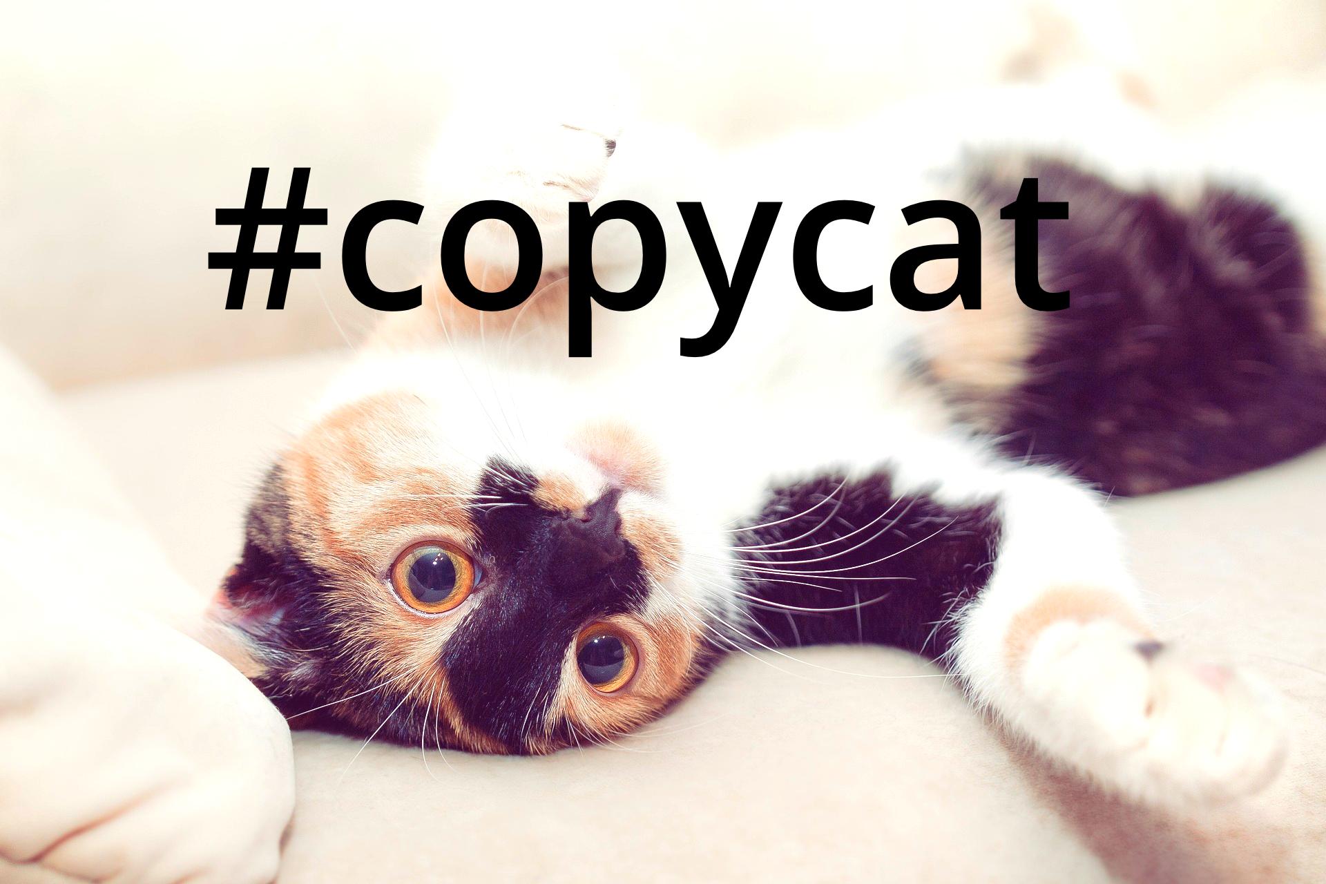 Twitter Copycat
